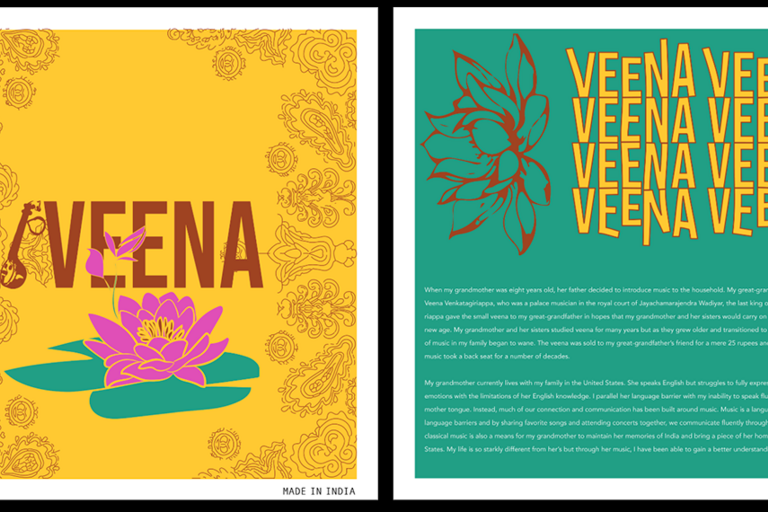 Veena (student project example)