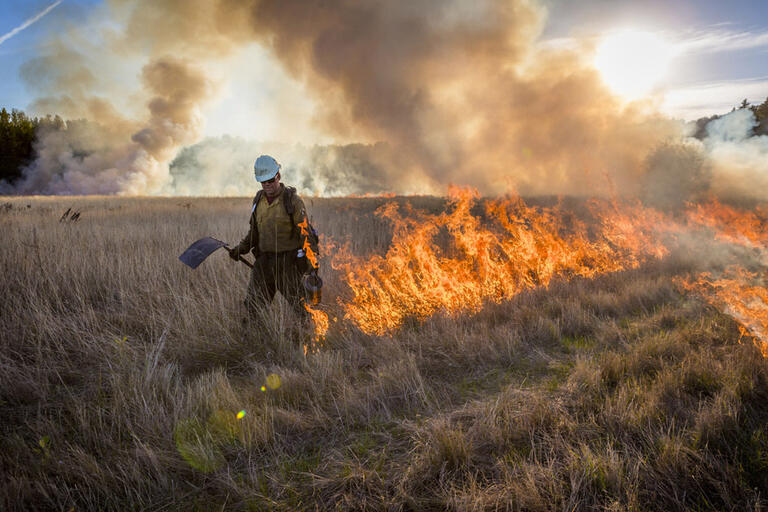 firefighter lights fire on open field during a controlled burn to manage and conserve area
