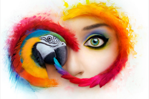 Adobe Creative Cloud Logo with Graphic Rendering of a Person with make up juxtaposed with a macaw