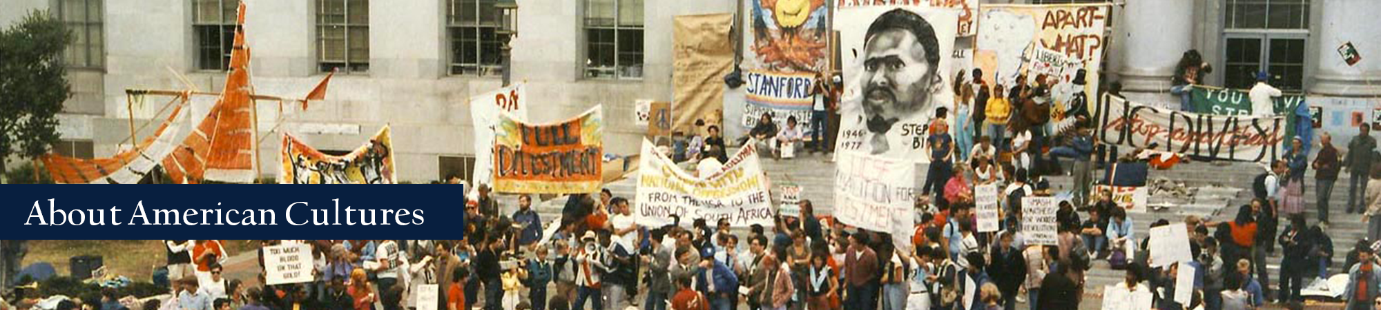 About American Cultures Banner featuring university students protesting the South African apartheid at Sproul Plaza
